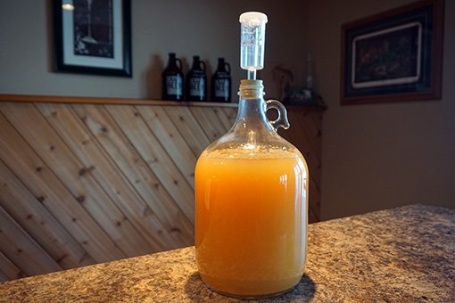 One gallon of cider in a glass carboy with an airlock fitted on top
