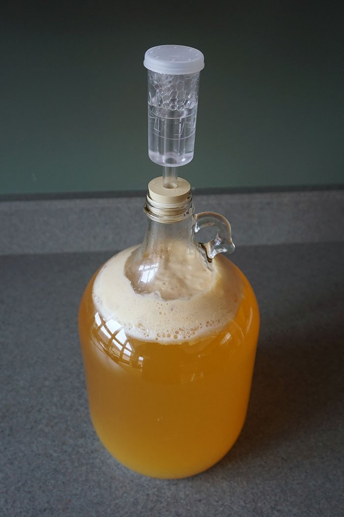 a carboy of fermenting hard cider