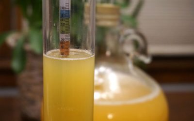 Non Fermentable Sugars and Sweeteners for Hard Cider