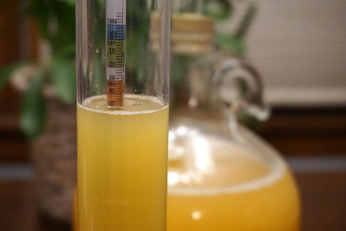 a hydrometer in pineapple cider reading 1.050 with a fermenter in the background