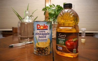Homemade Pineapple Hard Cider Recipe
