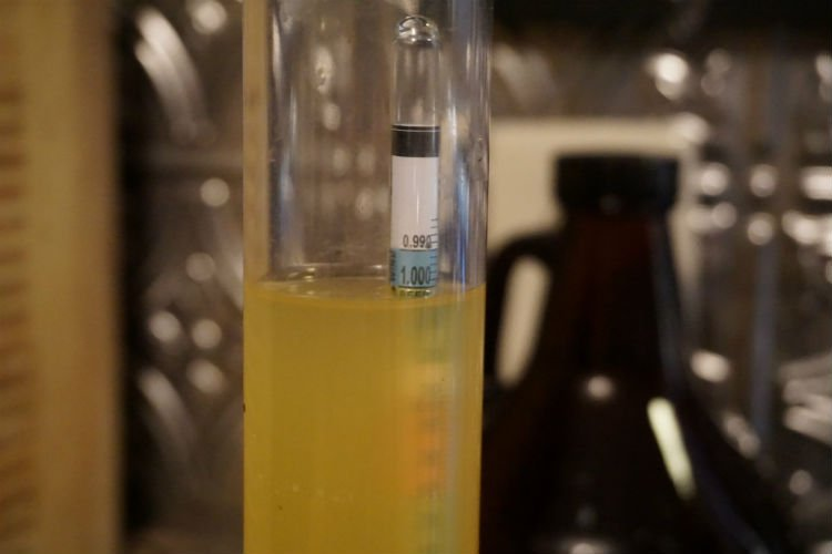 Hydrometer reading of a freshly hopped hard cider